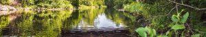 Gran Fondo Guysborough - River